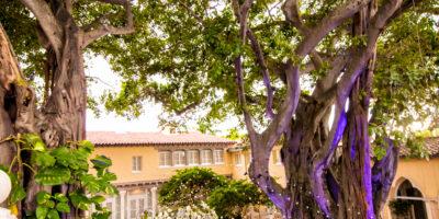 outdoor wedding venue south florida